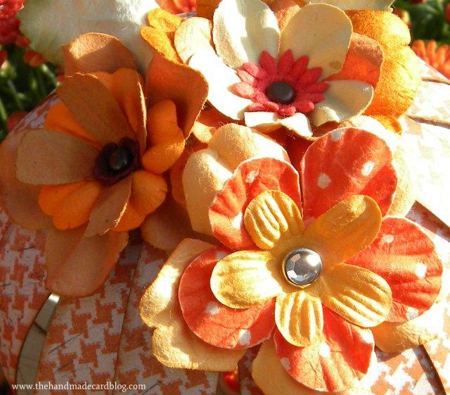 pumpkins 4