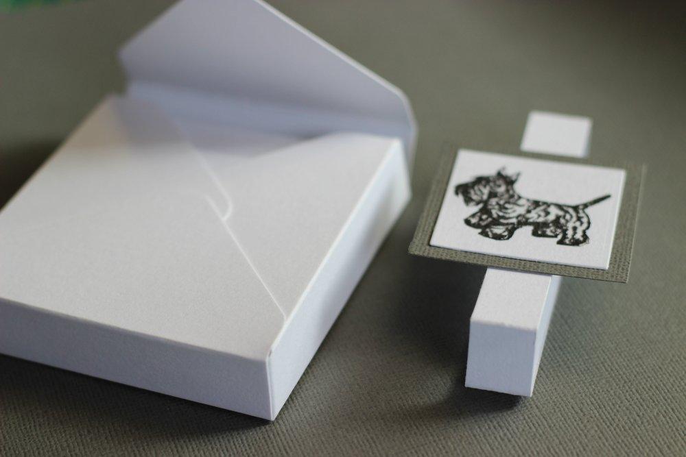 Boxed Card Set (2/4)