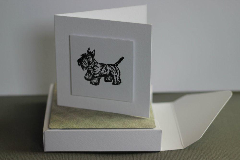 Boxed Card Set (4/4)