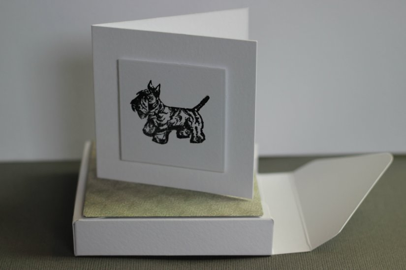 cardboxset3