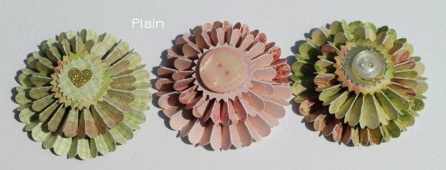 rosettes plain