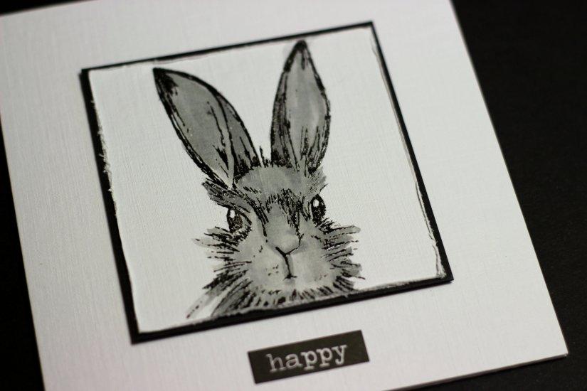 bunny foo 2.jpg